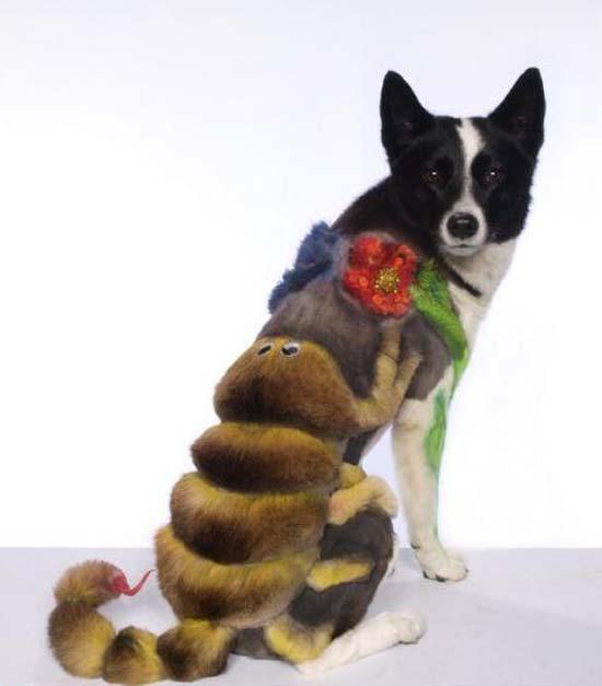 Ανεξήγητες φωτογραφίες με σκύλους (7)