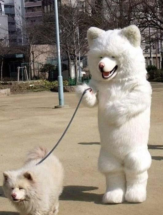 Ανεξήγητες φωτογραφίες με σκύλους (12)