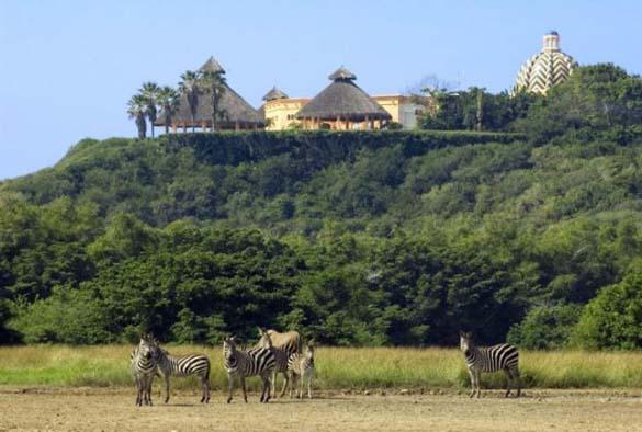 Cuixmala Luxury Resort (18)