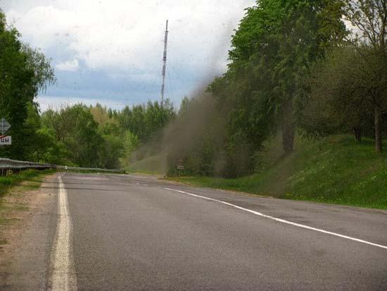 Επιδρομή από εκατομμύρια κουνούπια σε χωριό της Ρωσίας (7)