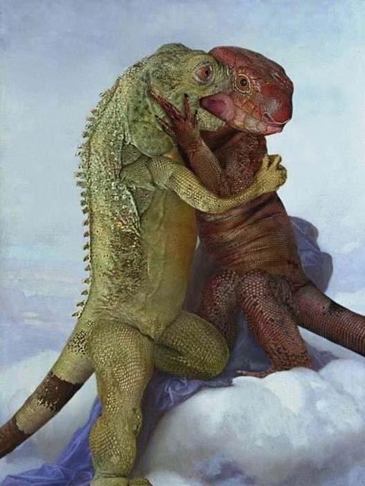 Ερωτευμένα ζώα (7)