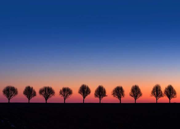 Φύση σε εκπληκτικές φωτογραφίες (2)
