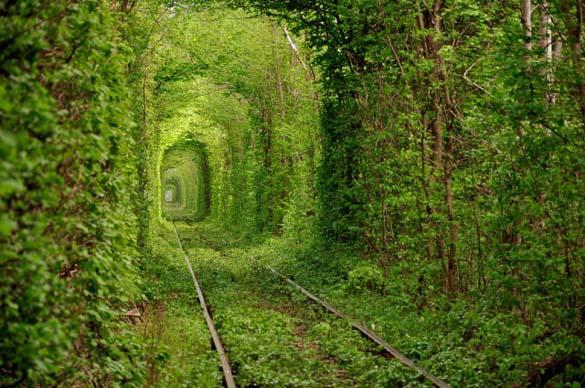 Φύση σε εκπληκτικές φωτογραφίες (9)