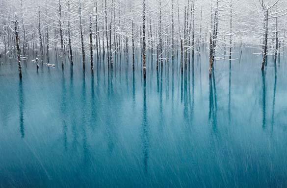 Φύση σε εκπληκτικές φωτογραφίες (14)