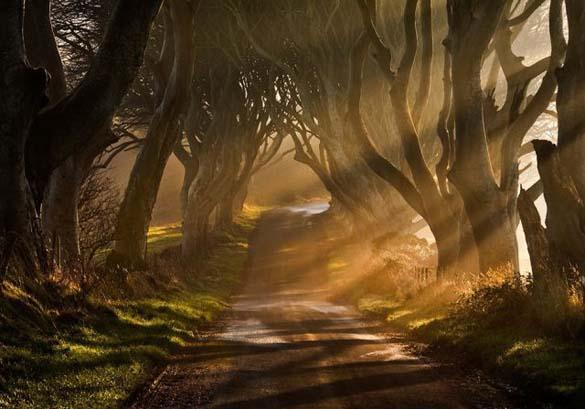 Φύση σε εκπληκτικές φωτογραφίες (15)