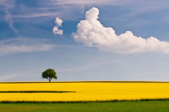 Φύση σε εκπληκτικές φωτογραφίες (18)