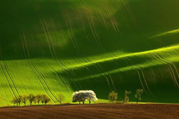 Φύση σε εκπληκτικές φωτογραφίες (23)