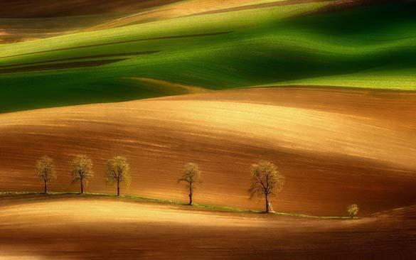 Φύση σε εκπληκτικές φωτογραφίες (21)