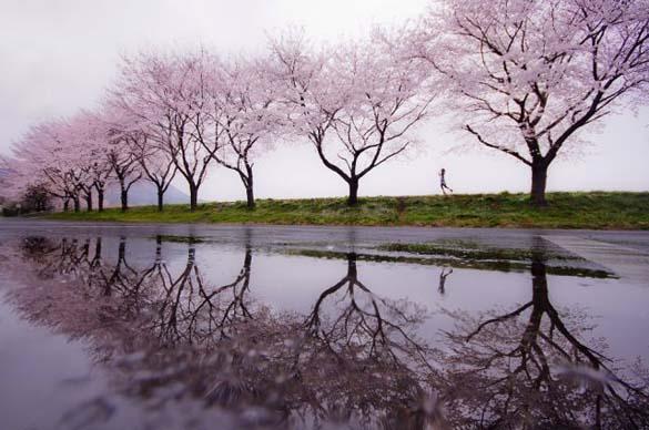 Φύση σε εκπληκτικές φωτογραφίες (22)