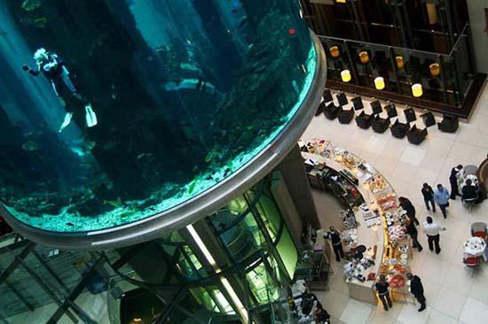 Το μεγαλύτερο κυλινδρικό ενυδρείο στον κόσμο (4)