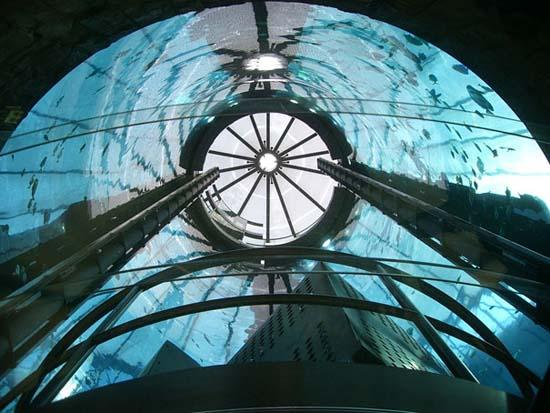 Το μεγαλύτερο κυλινδρικό ενυδρείο στον κόσμο (6)