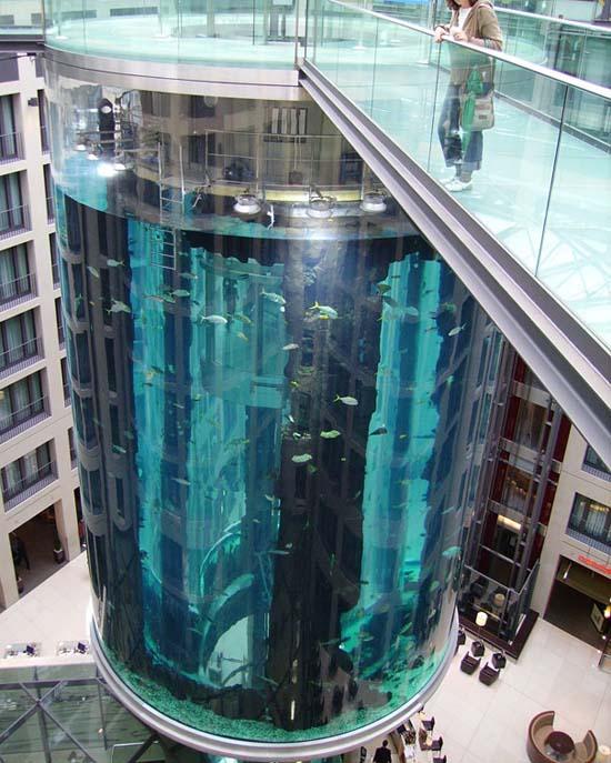 Το μεγαλύτερο κυλινδρικό ενυδρείο στον κόσμο (8)