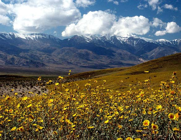 Η μυστηριώδης Κοιλάδα του Θανάτου στην Καλιφόρνια (2)