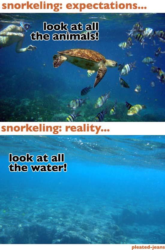 Παραλία: Προσδοκίες vs Πραγματικότητα (3)
