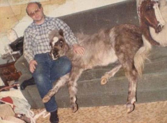Παράξενες οικογενειακές φωτογραφίες με κατοικίδια (23)