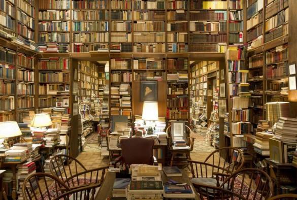 Απόψε δεν θα βγω, έχω λίγο διάβασμα... | Φωτογραφία της ημέρας