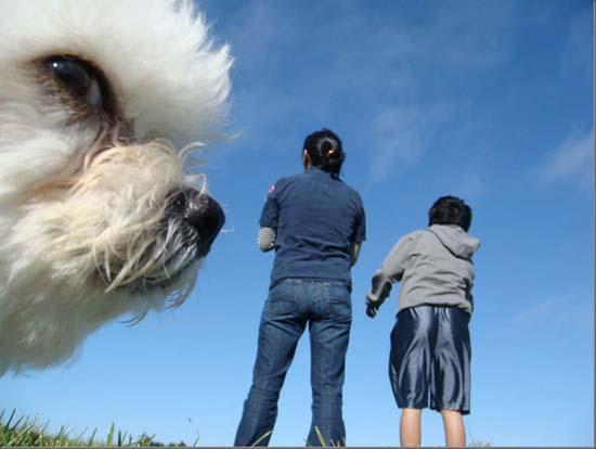 Τα 35 πιο ξεκαρδιστικά photobombs από ζώα (29)