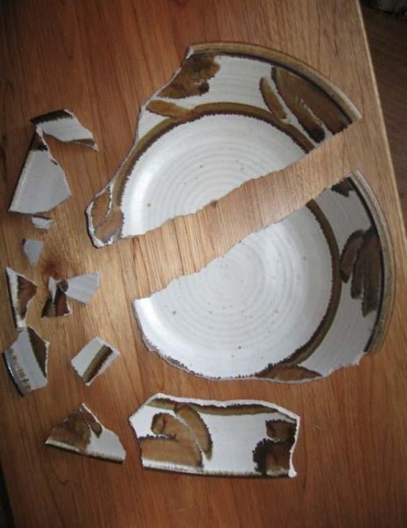 Όταν τα κατοικίδια έχουν καταστροφικές διαθέσεις (8)