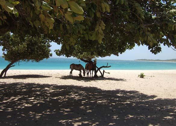 25 μοναδικές παραλίες απ ' όλο τον κόσμο (8)