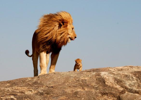 Πατέρας και γιος | Φωτογραφία της ημέρας