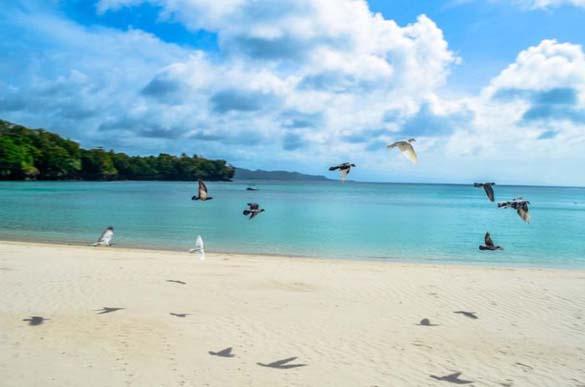 Υπέροχες παραλίες (13)