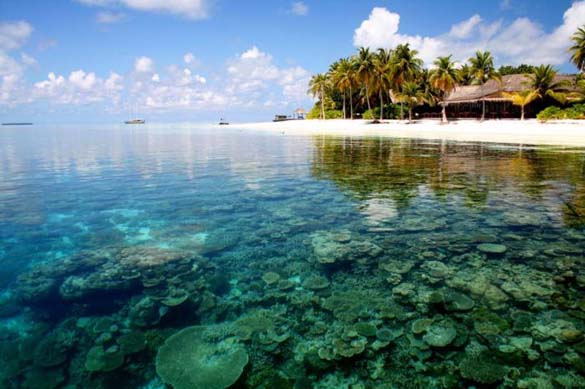 Υπέροχες παραλίες (19)