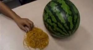 Τι θα συμβεί αν βάλεις 500 λαστιχάκια σε ένα καρπούζι; (Video)