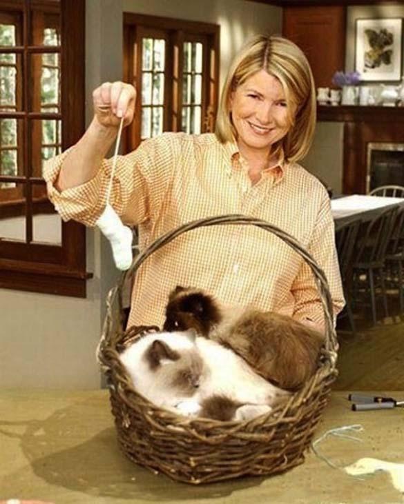 Παράξενα πορτραίτα διασήμων με γάτες (5)