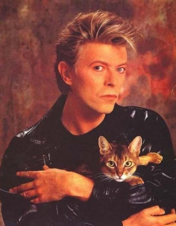 Παράξενα πορτραίτα διασήμων με γάτες (18)