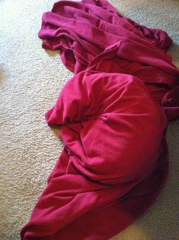 Παράξενες στάσεις ύπνου για σκύλους (23)