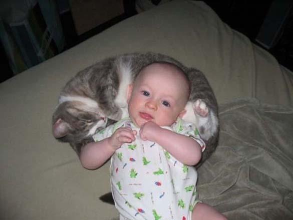 Γάτες και μωρά (4)