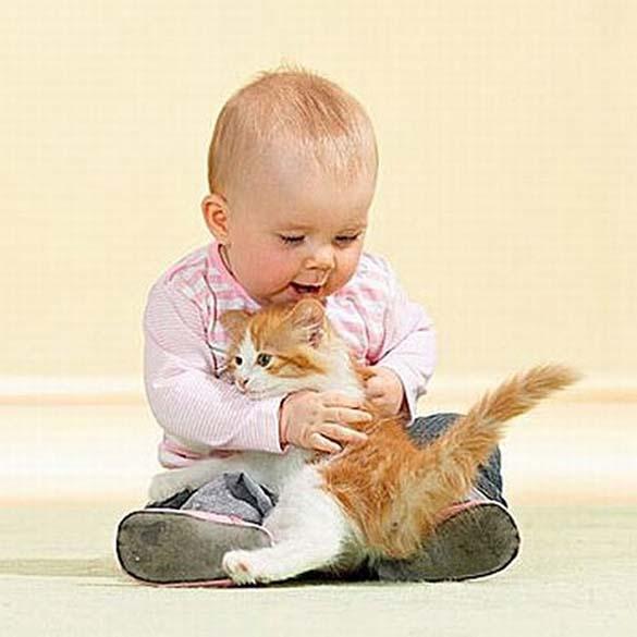 Γάτες και μωρά (5)