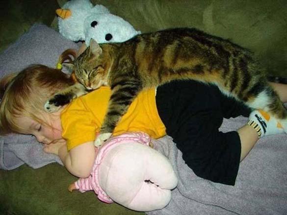 Γάτες και μωρά (7)