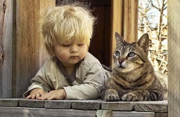 Γάτες και μωρά (10)