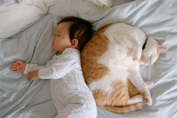Γάτες και μωρά (11)