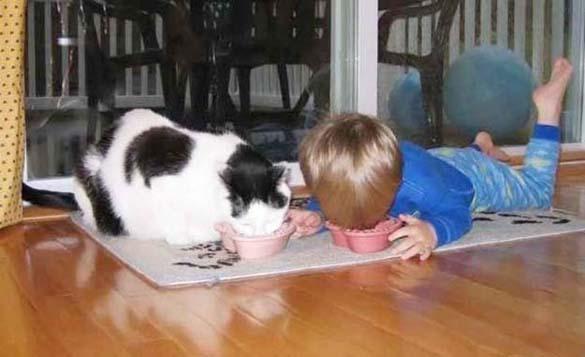 Γάτες και μωρά (15)