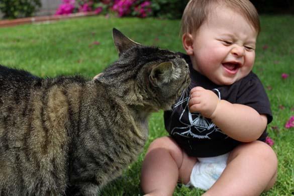 Γάτες και μωρά (18)