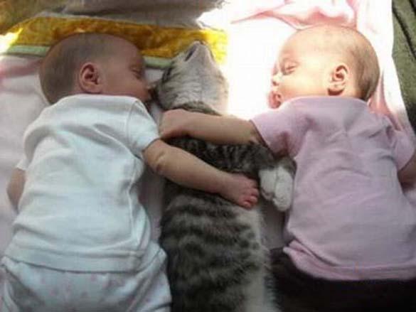 Γάτες και μωρά (21)