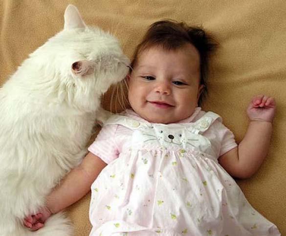 Γάτες και μωρά (23)