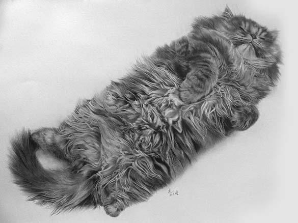 15 γάτες που δεν θα πιστεύετε ότι είναι μόνο σκίτσα με μολύβι (8)