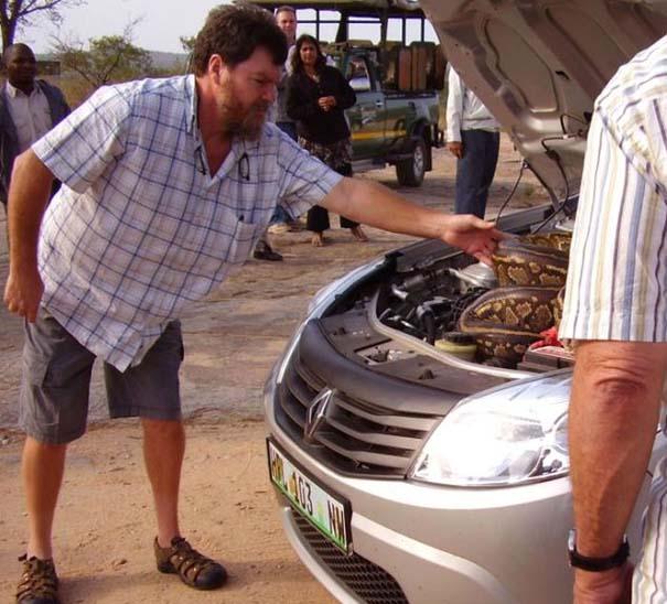 Απίστευτο εύρημα κάτω από το καπό αυτοκινήτου (3)