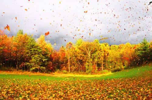 Φθινόπωρο (2)