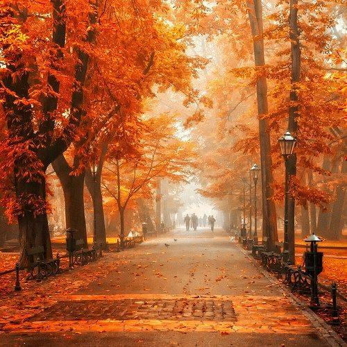 Φθινόπωρο (8)