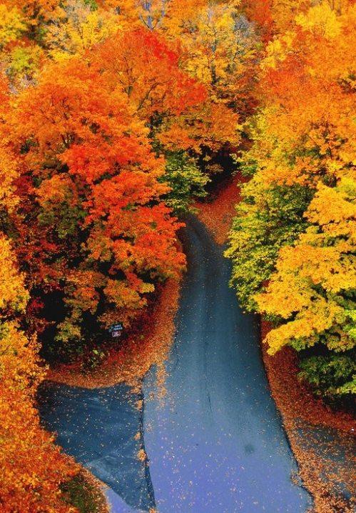 Φθινόπωρο (9)