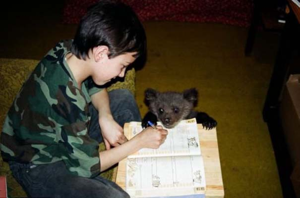 Γυναίκα από τη Λετονία μεγαλώνει αρκούδα μαζί με τα παιδιά της (3)