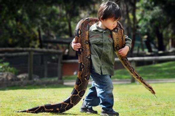 Ο Charlie και το φίδι (2)