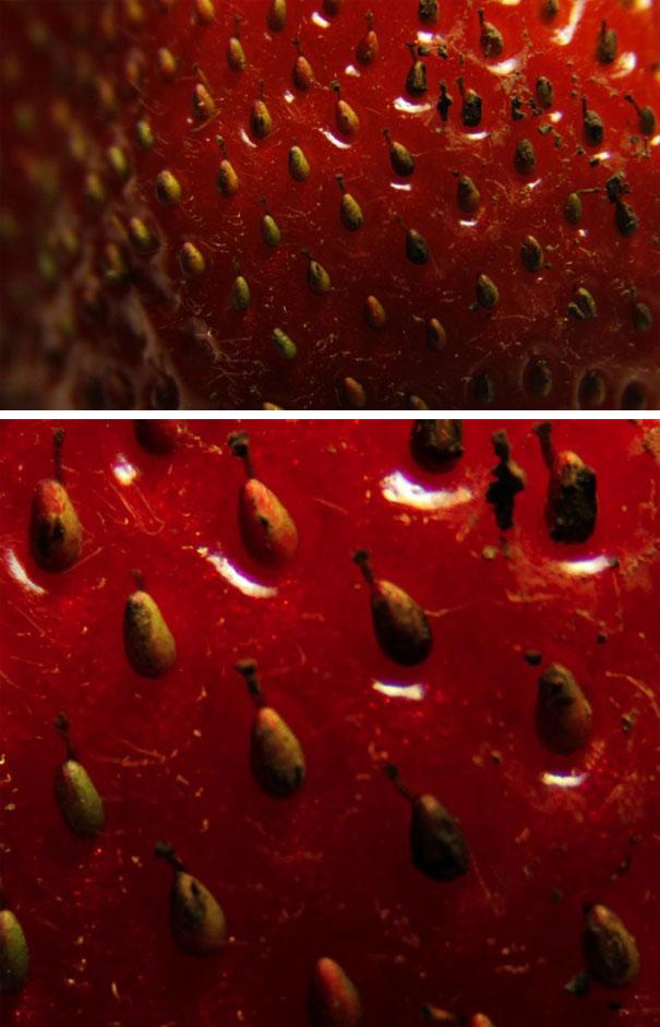 Η επιφάνεια μιας φράουλας από κοντά... | Φωτογραφία της ημέρας