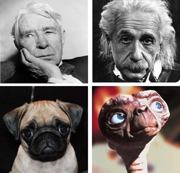 10 πράγματα που δεν γνωρίζατε για τον E.T. (9)