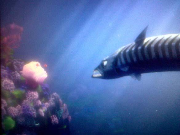 Πράγματα που δεν γνωρίζατε για τη ταινία «Ψάχνοντας τον Νέμο» (12)