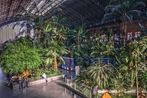 Τροπικό δάσος μέσα σε σταθμό τρένου στη Μαδρίτη (2)